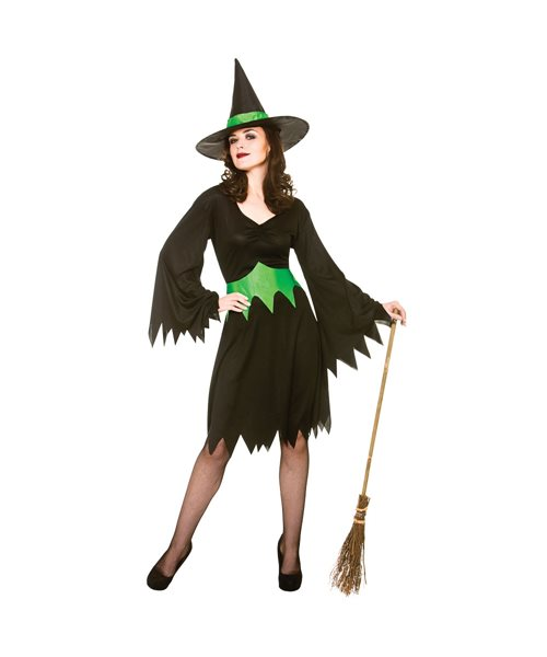 Wicked Witch Halloween Wicked Cauldron Adults Womens Fancy Dress Costume